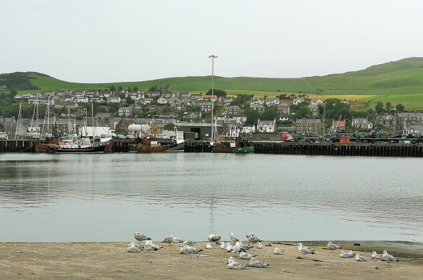 NotesScotlandCampbeltown5.jpg